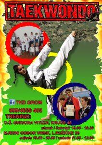 taekwondo-grom